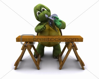 Tortoise with a power saw