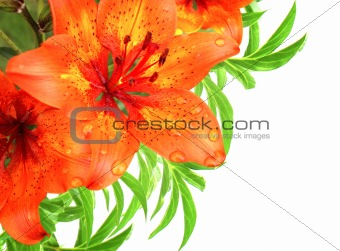 Bouquet with red lilies