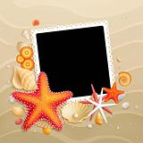 Picture, shells and starfishes on sand background