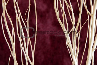 Branches over purple background