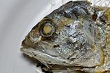 Chub mackerel fried