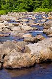 Wooded stream with many rocks