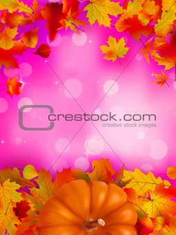 Autumn card of bright