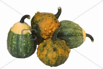 five pumpkin