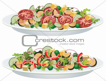 vegetable salads on a plate