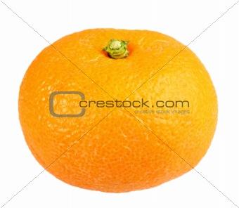 One full fruit of orange tangerine