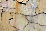 Old wall. texture - 53