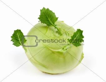 kohlrabi cabbage