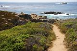 Big Sur Hiking