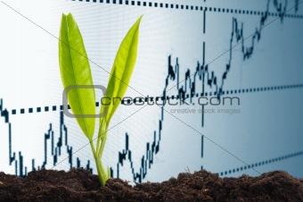 growing economy