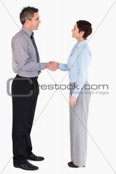 Managers shaking hands