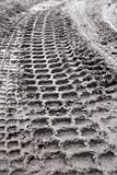 Tiire track in mud