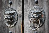 Bronze lion&#39;s head handles