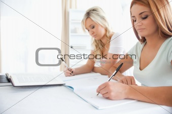 Portrait of Students sitting at a table doing their homework