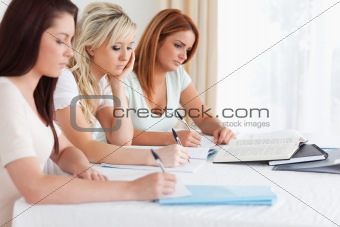 Portrait of Students learning at a table