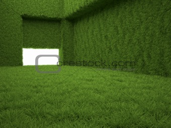 Grass room