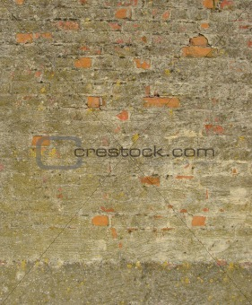 brick wall with yellow spurs and green discoloration