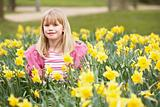 Young Girl Surrounded By Daffodils