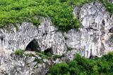 Fragment of Limestone Rock