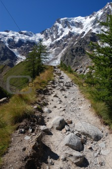 Trail to Monte Rosa