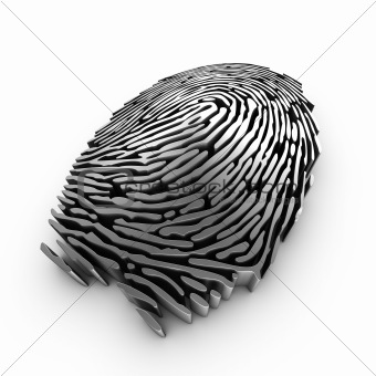 Digital fingerprint for authentication