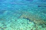 Reef in the Clear Water