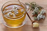 fresh herbal tea