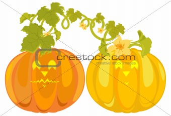 Vector pumpkins sweethearts