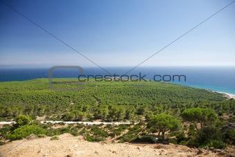 aerial view of Cadiz coastline
