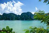 phi phi tropical paradise islands in thailand