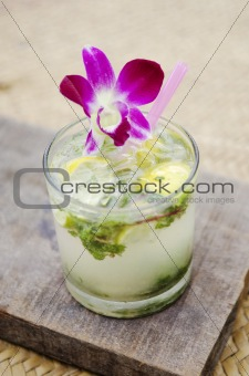 mojito tropical cocktail drink