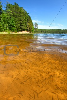 Clear Waters of Northwoods Wisconsin