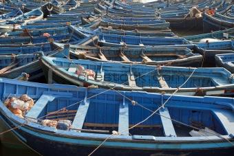 Blue boats in Essaouira port.