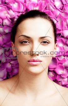 beauty rose petals