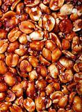 Indian peanut sweet - chikki