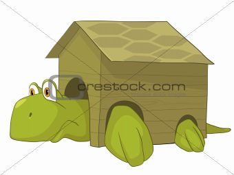 Cartoons_0087_Turtle_Vector