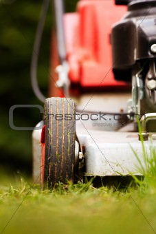 detail of a lawn-mower outdoor