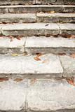 leaves on old stairs