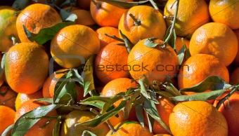 Satsumas on a Market Stall