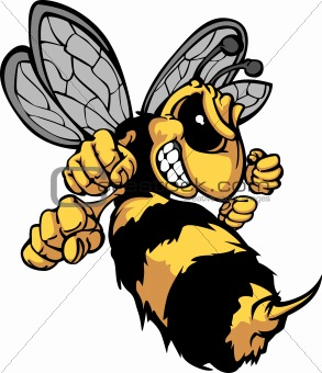 Bee Hornet Cartoon Vector Image