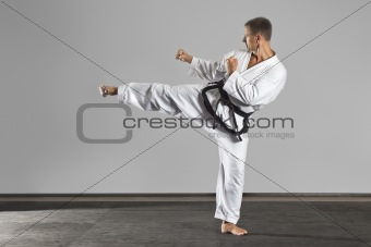 martial arts master