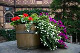 Flowers in a barrel