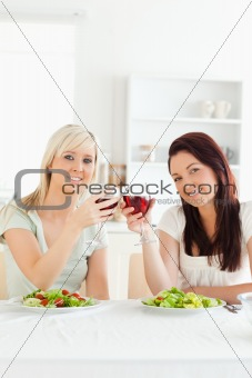 Cute Women toasting with wine
