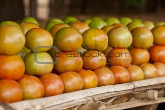 African tomatoes