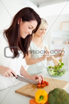 Beautiful young Women preparing dinner
