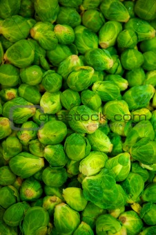 Green Brussell Sprouts in pile