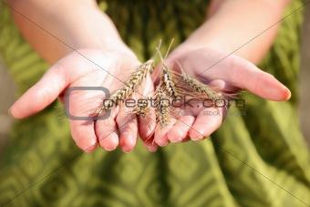 Crop on hand