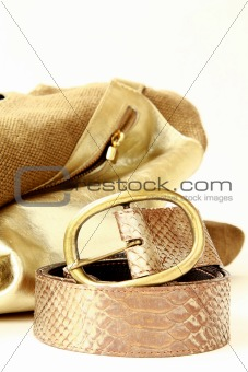 female decorative gold bag and a stylish belt