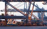 Container terminal Cranes