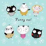 funny owl